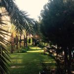 Foto di IC Hotels Green Palace