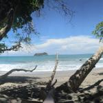 Arenas del Mar Beachfront and Rainforest Resort, Manuel Antonio, Costa Rica Foto
