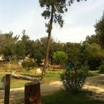 Photo de Riva Bella Naturiste Camping