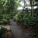 Walkway leading to the Orchid Villa.