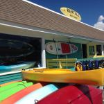 Bass River Kayaks, Cruises and Paddleboards
