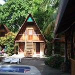The Howler Monkey Hotel