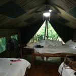 My Room in a tent