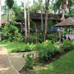 Walking path within the Resort