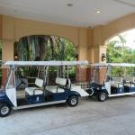 Golf carts to transport guests around the property