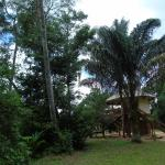 Nature Resort Kabalebo