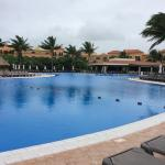 The Activities Pool