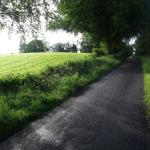 Narrow paved laneway from Omagh