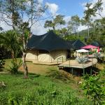Las Carpas - Luxury camping in the Jungle!