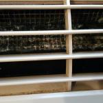 Mildew in AC vents. Makes the whole room smell.