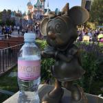 Bottle of water for hot days at Disneyland.....