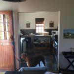Karoo View Cottages kitchen with Jackson
