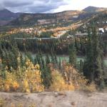Denali Grizzly Bear Cabins & Campground Foto