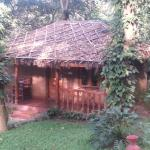 Photo de Thekkady - Woods n Spice, A Sterling Holidays Resort
