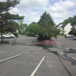 the nearly empty parking lot, yet there were no rooms available to switch us to -