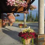 Foto di Copper River Princess Wilderness Lodge