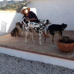Dogs enjoying the shade of One of The Almond Suites Terraces