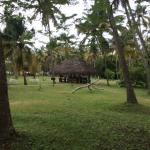 Foto de Marari Beach Resort