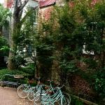 Courtyard with complimentary bike hire