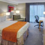 Photo de Quality Hotel Montreal East / Olympic Parc