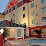 Photo de Hilton Garden Inn Tampa Northwest / Oldsmar