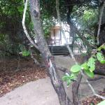 Small private path through the forest from beach bungalow to the beach.