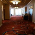 Hallway leading to conference rooms