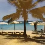 Beach at red coconut
