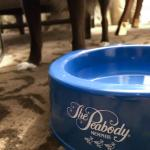 Your own dog bowl upon arrival