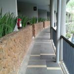 Hotel NEO+ Green Savana Sentul City