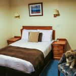 dog friendly hotel in Bournemouth