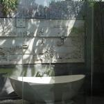 Outdoor shower/tub area