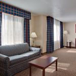 Foto di Holiday Inn Express Hotel & Suites Jackson