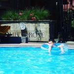 Foto de White Rose Hotel & Villas
