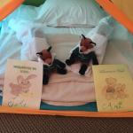 They set up a play tent for my twin nephews with a stuffed animal and little bath robes and slip