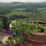 View from the main house patio, Casa di Monte
