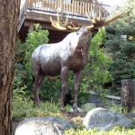 Entry to main lodge - Triple Creek Ranch