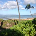 Dolphins Point Maui Foto