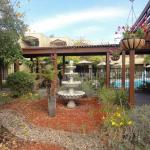 BEST WESTERN PLUS Wine Country Inn & Suites Foto