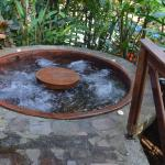 One of the many natural hot-spring pools hidden around the property