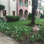Beautiful grounds and throughly relaxing stay