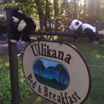 Ted-E and Bear are sooo glad to be here at Ullikana Inn.