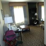 Hampton Inn & Suites Houston I-10/Central Foto