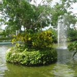 Beautiful fountains and ponds