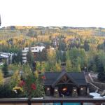 View from the bar patio. Fall colors!
