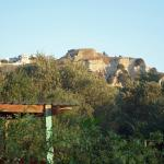 Kefalos Fort from Denise Apps over the Olive grove trees