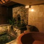 The bathroom of Puri Le Mayeur. Complete with it's own koi pond!