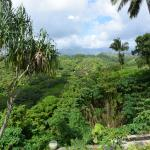 The view from our private lanai