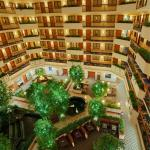 Photo of Embassy Suites by Hilton Austin - Arboretum