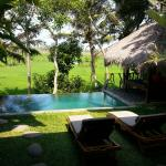 View of pool over looking the Padi fields
